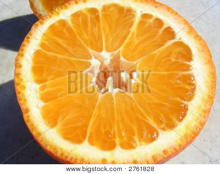 Fresh Picked Orange