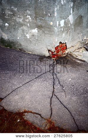 Crack In Asphalt Vertical