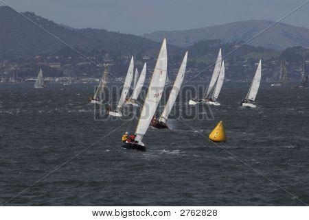 Sailboat Racing On San Francisco Bay