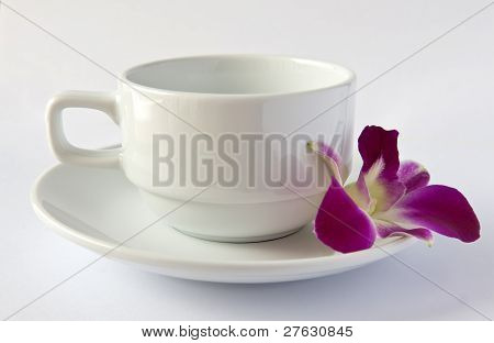 Empty White Cup And Saucer And An Orchid
