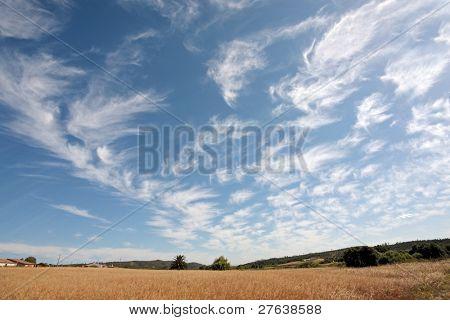 Wheatfield and a beautiful cloudshape in Portugal