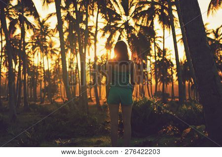 poster of Traveler Girl Ln Tropical Nature In Vacation. Young Girl Traveler Looking To Sunset In Nature. Trave