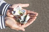 A Child Holds Coins And Euro Notes In His Hands. Pocket Money Image. poster