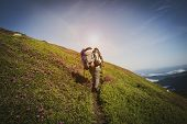 Traveler, Female Going Up On The Mountain Trail Among Flowering Pink Rhododendrons. Epic Travel In T poster