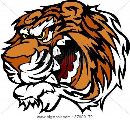 Mascota de la historieta del tigre con Snarling dientes Vector Illustration