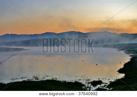 Fog Over Pond