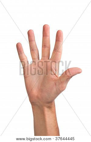 Hand Gesture Number Five Closeup Isolated On White