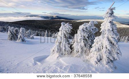 view from jesenik to kralicky sneznik moravia - czech republic
