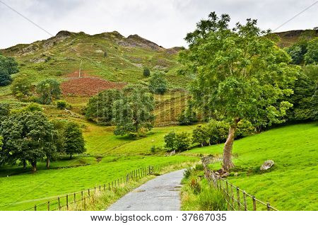 Pathway under Loughrigg Fell