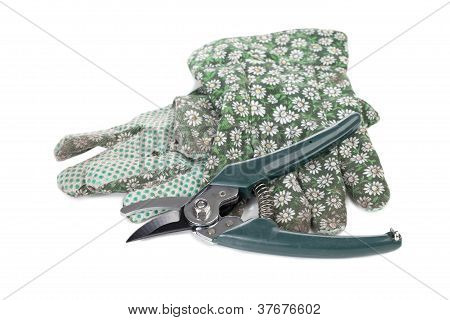 Gardening Gloves And Pruner