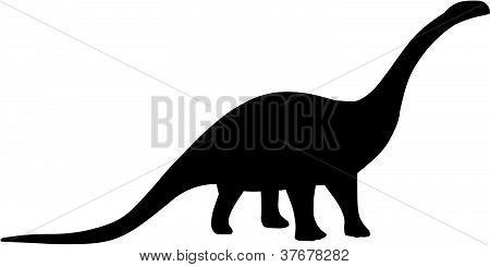 Brontosaurus / Apatosaurus Dinosaur