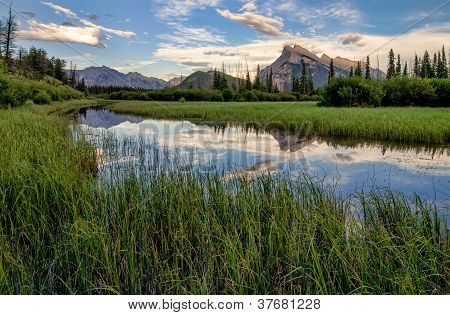 Vermilion Lakes Marshland With Mountain Reflection