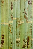 stock photo of homogeneous  - Sample of homogeneous texture of green wood bamboo - JPG