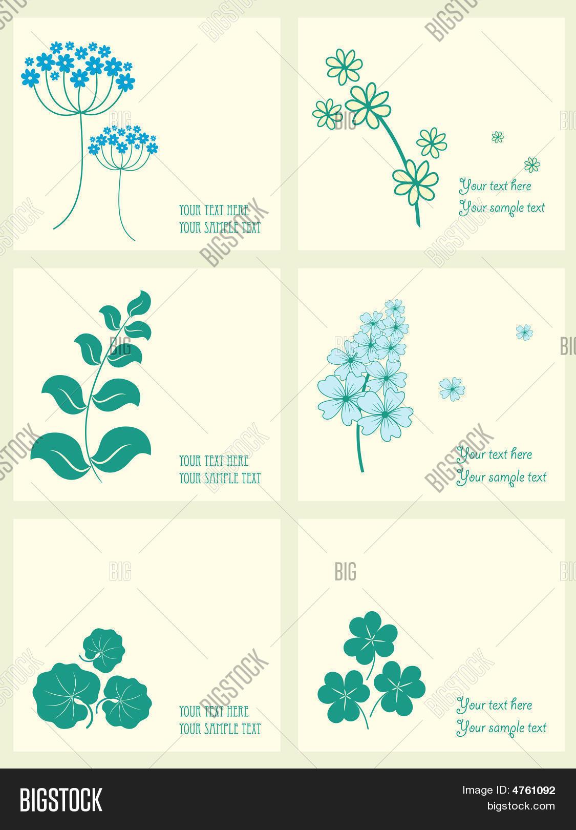 banco de jardim vetor:jardim e o conjunto de quadros de ervas. Bancos de Vetores & Bancos de