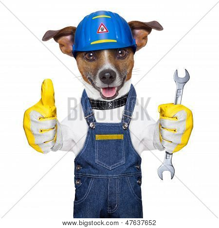 Craftsman Dog