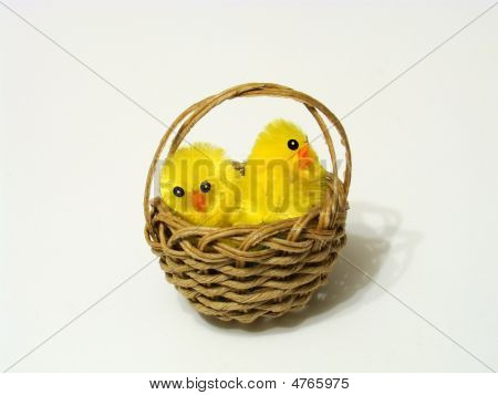Chicks In Easter Basket