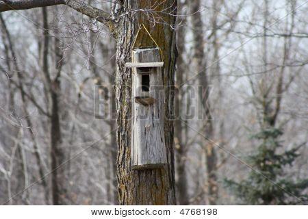 Birdhouse In A Tree