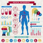 foto of internal organs  - Medical infographic elements collection - JPG