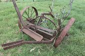picture of horse plowing  - Vintage plow overgrown with cactus - JPG