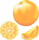 foto of tangelo  - Vector illustration of whole orange slice and wedge with green coloring and texture - JPG