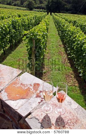 Glasses of rose / red and white sparkling wines with a vineyard background