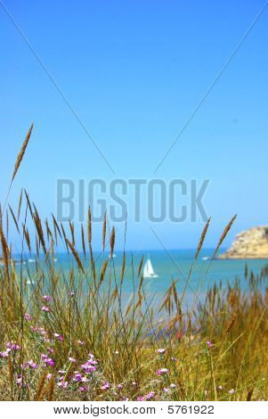 Beach of S. Martinho do Porto.
