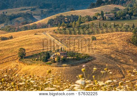 Tuscan Farm Countryside Scenery