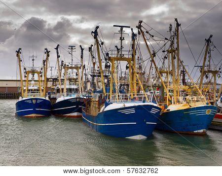Modern Fishing Fleet
