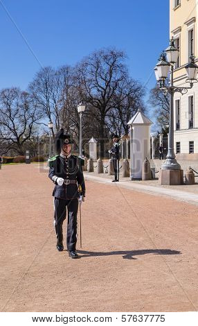 Guardsman Of The Royal Palace