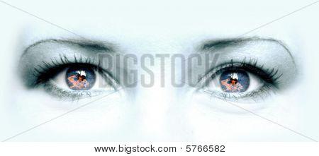 Burneyes