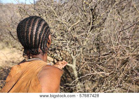 Nharo Bushmen Woman