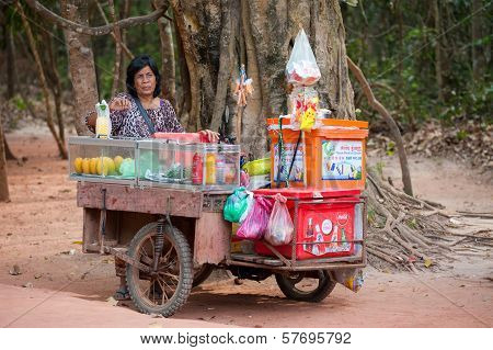 Tradeswoman At Angkor, Cambodia