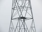 Osprey Nest On High Voltage Tower