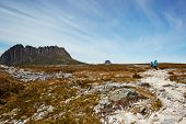 stock photo of windswept  - Windswept hikers on the desolate Overland Trail Tasmania - JPG