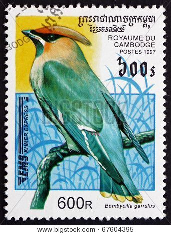 Postage Stamp Cambodia 1997 Bohemian Waxwing, Bird
