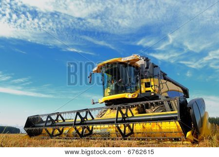 Harvesting Combine In The Field