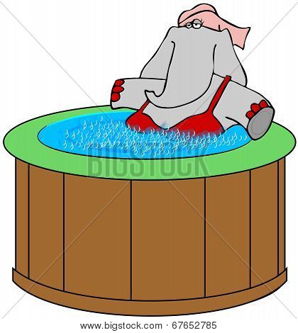 Elephant in a hot tub