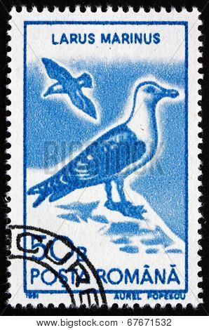 Postage Stamp Romania 1991 Great Black-backed Gull, Bird