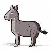 stock photo of mule  - cartoon mule - JPG