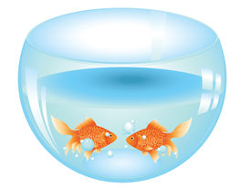 picture of fishbowl  - Cartoon gold fish swimming in the water in a fishbowl - JPG
