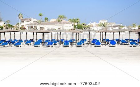 Panorama Of Blue Sunloungers, Palm Trees And Parasols On Sandy Sunny Spanish Beach