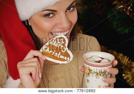 Portrait Of Beautiful Smiling Young Woman With Cookies Near Christmas Tree At Home