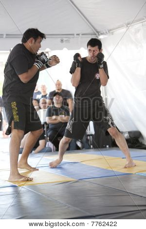 Imb Mixed Martial Arts