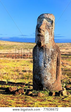 Standing Moai In Bright Sunshine In Easter Island