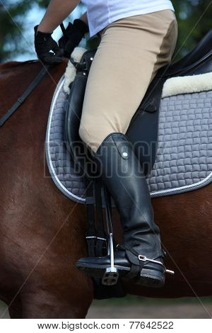 Close Up Of Rider Leg