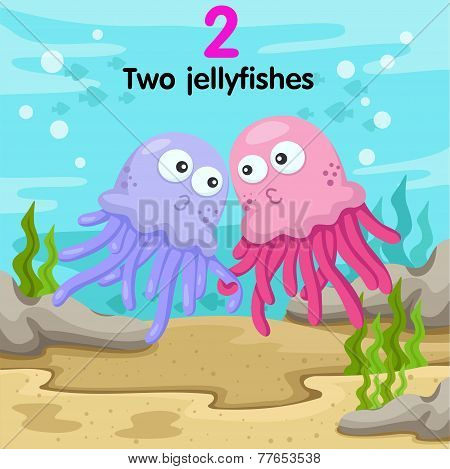 Illustrator of number two jellyfishes