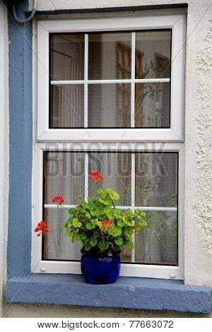 Pretty blue pot with geraniums on window sill