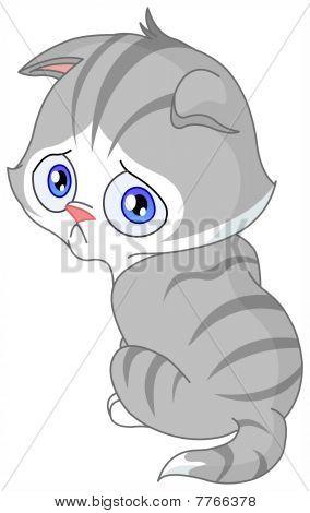 Traurig Kitten