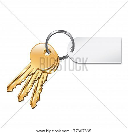 Keys With Tag Isolated On White Vector