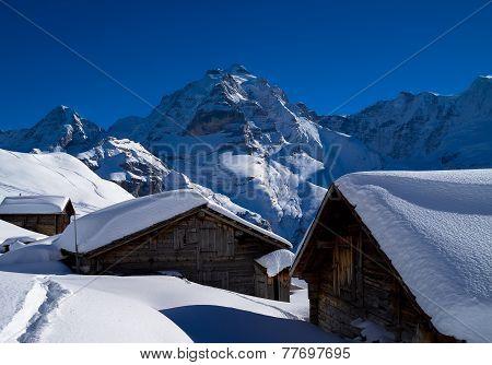 Moench and Jungfrau behind Farmhouses